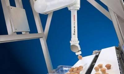 images easyblog images 74 b2ap3 thumbnail robot alimentacion