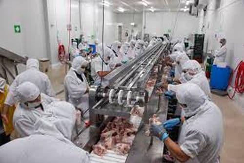 Proceso de automatización industrial de la carne